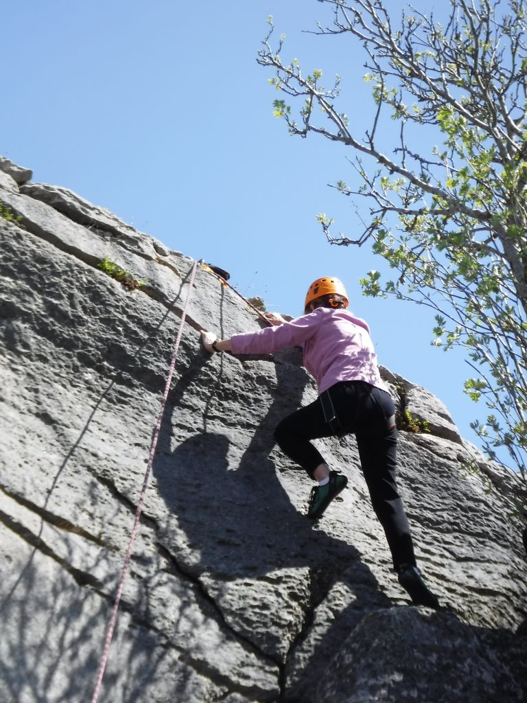 Woman climbing a small limestone buttress with a tree